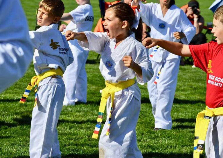 Youth and Family Martial Arts