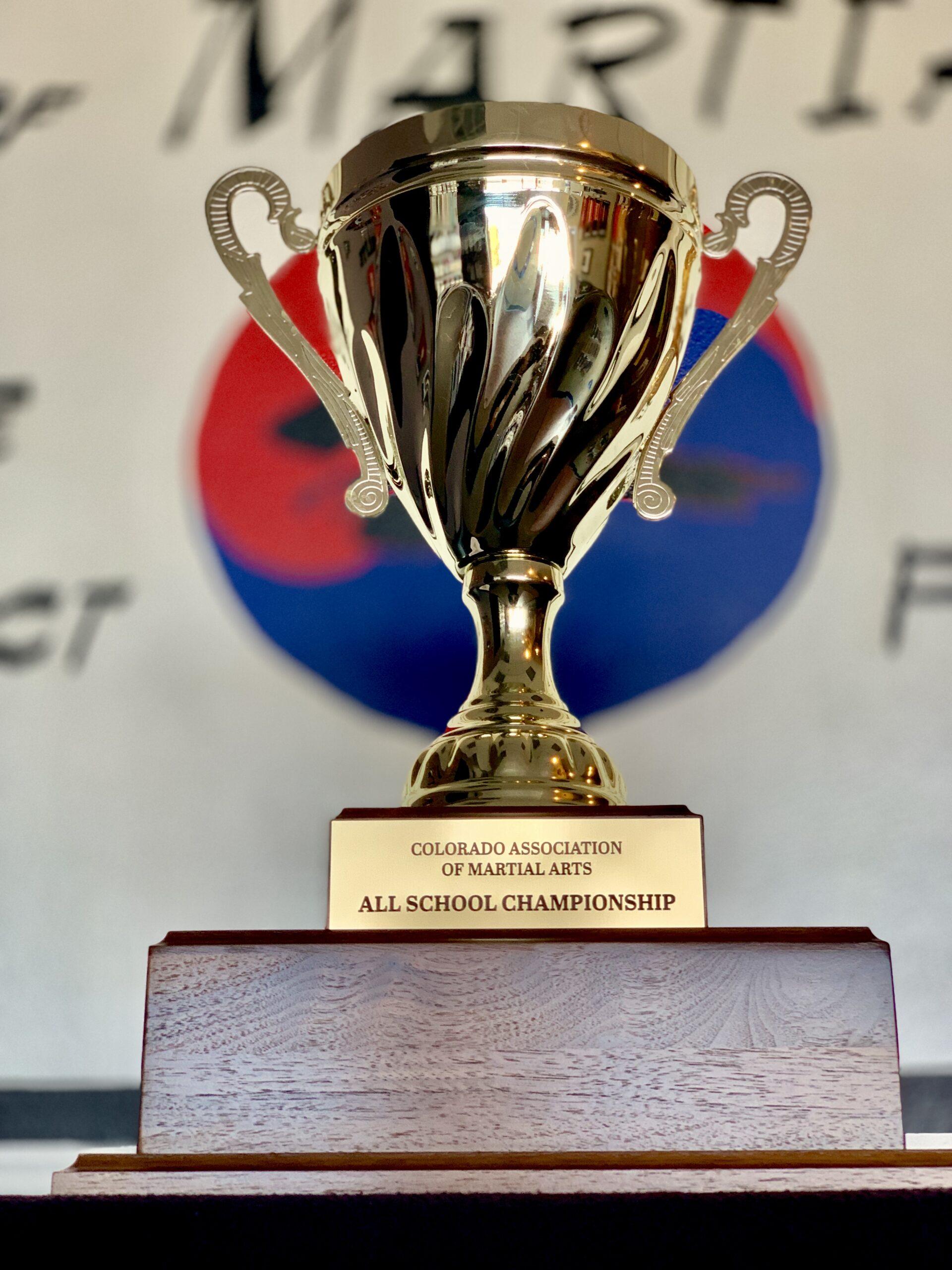 Competition Taekwondo Team