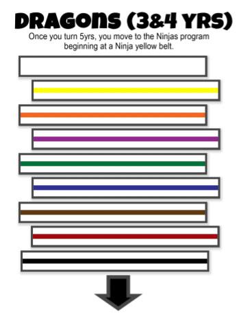 Dragon Taekwondo Belts